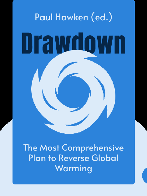 Drawdown: The Most Comprehensive Plan Ever Proposed to Reverse Global Warming von Paul Hawken (ed.)