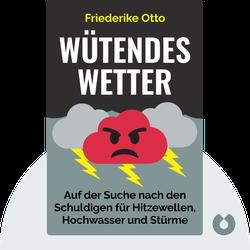 Wütendes Wetter: Auf der Suche nach den Schuldigen für Hitzewellen, Hochwasser und Stürme by Friederike Otto