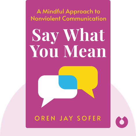 Say What You Mean von Oren Jay Sofer