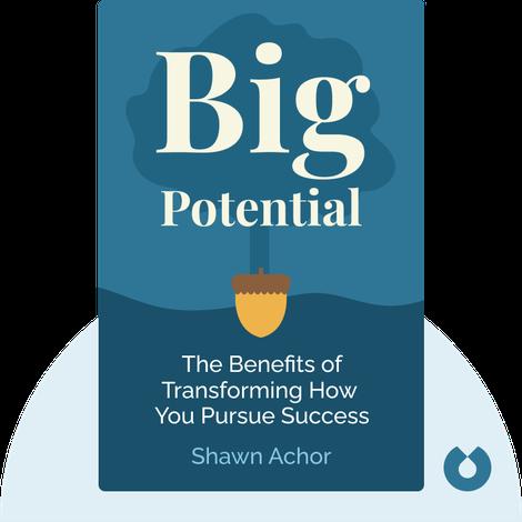 Big Potential by Shawn Achor