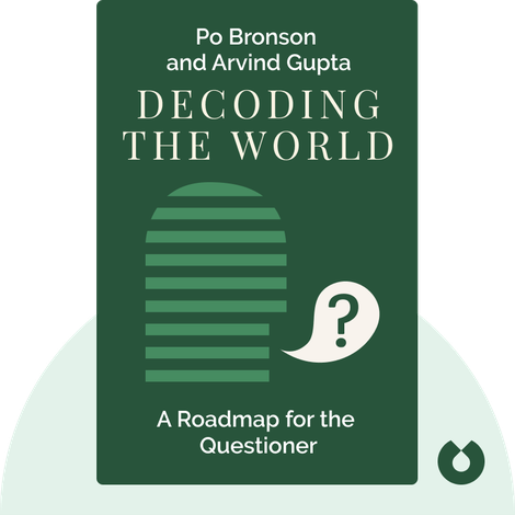 Decoding the World by Po Bronson and Arvind Gupta