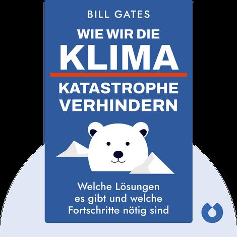 Wie wir die Klimakatastrophe verhindern von Bill Gates